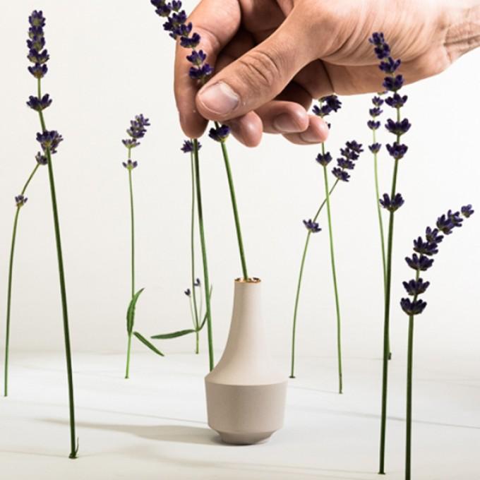 """Mini Vase """"Thekla"""" mit Goldrand – studio.drei"""