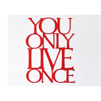 Frau Schneize You Only Live Once, 56x42cm