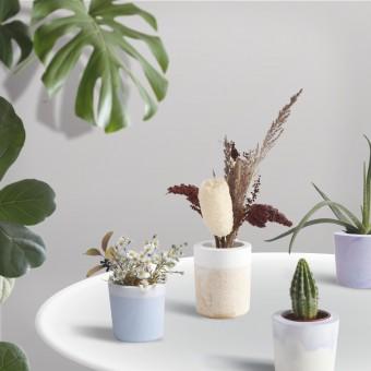 FLOWERPOT - DIY Bausatz für 3x individuelle Blumenübertopf