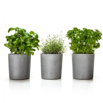 urbanature - Spicepot 3er Set