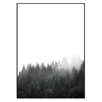 na.hili walk through the FOREST - A1 Artprint - Poster