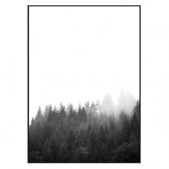 "nahili ARTPRINT/POSTER ""walk through the FOREST"" (DIN A1/A3 & 50x70cm)"