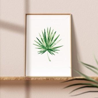 "Paperlandscape | Aquarell Kunstdruck ""Fächerpalme"" | Pflanze | Palmblatt | verschiedene Größen"