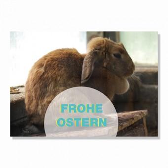 "ZEITLOOPS Postkarte ""Frohe Ostern"""