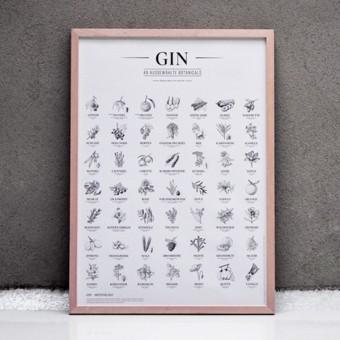 Gin Plakat, 49 ausgewählte Kräuter Botanicals Gin Aromen als Poster, Dekoration, wall decor, Geschenk für Küche und Wohnzimmer in A2 und SW (OHNE RAHMEN)