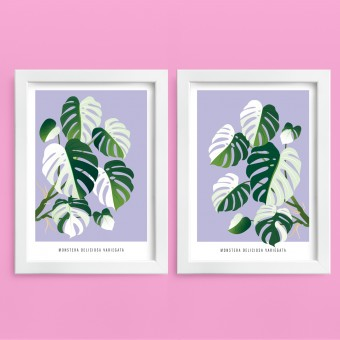"Hey Urban Monkey - A4 Doppelposter - ""Monstera Varigata"""