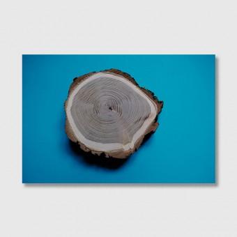 """ZEITLOOPS """"Jahresringe, blau"""", Fineartprint 40x60 cm"""