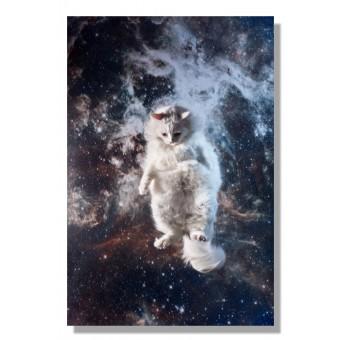 Kunstprint Poster Katzmonauten Marzipan Katze im Weltall 30x40cm cats in space