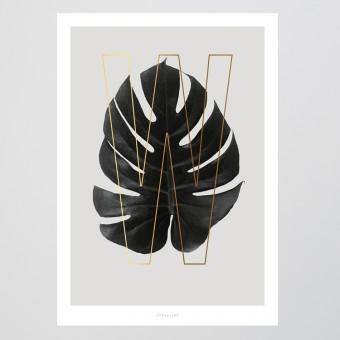 typealive / ABC Plants - W
