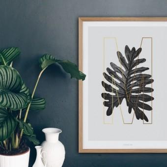 typealive / ABC Plants - M