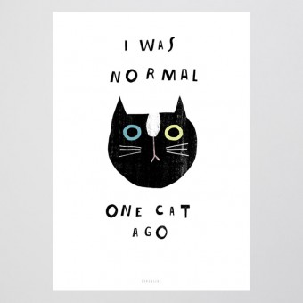 typealive / Catisfaction No. 9