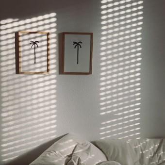 Palmen Lovers Print-Set A4 – Johanna Schwarzer