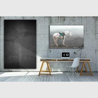 "ZEITLOOPS ""Pferd"", Druck auf AluDibond, 60x90 cm"