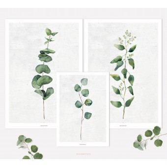 designfeder |Poster Pflanze Urban Jungle No.1+2+3