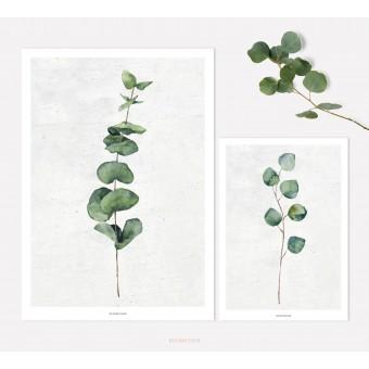 designfeder | Poster Pflanze Urban Jungle No.1+3