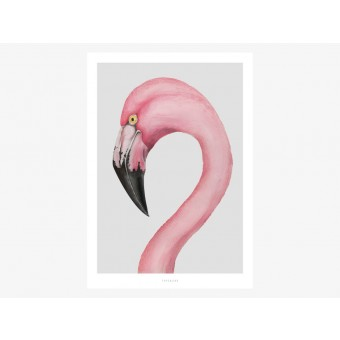 typealive / Flamingo
