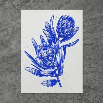 Juliana Fischer - Protea - Linoldruck, ultramarinblau, 22,8 x 30,6 cm