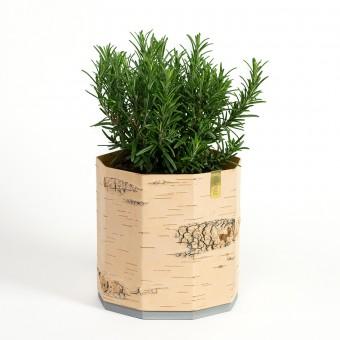 MOYA Pflanztopf / Blumentopf / Übertopf für Pflanzen und Kräuter aus Birkenrinde - TARA Groß