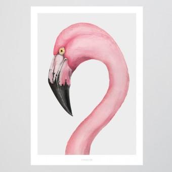 typealive / Flamingo