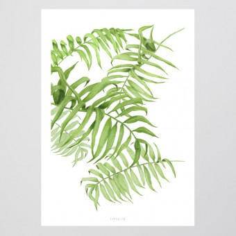 typealive / Tropical No. 1