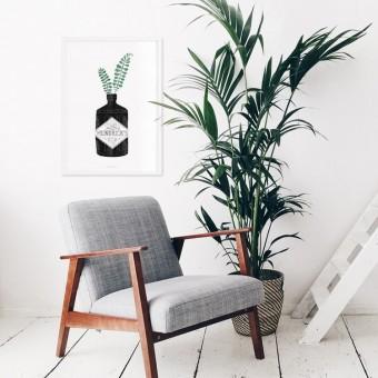 typealive / Urban Jungle No. 2