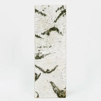 MOYA Birken Wandpaneele GROSS - Wandbild aus echter Birkenrinde mit Moos und Flechten auf Holz - Wanddekoration - Rinden Wandkunst