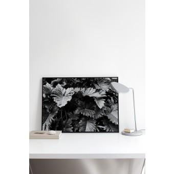 Coco Lapine Design Botanical no. 3 Print