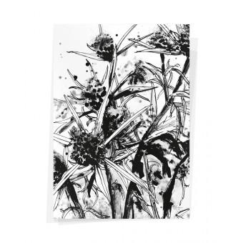 Wolfgang Philippi BANISCHKA Plakat 70x100 cm
