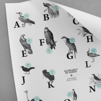 The True Type Poster, ABC der Vögel / alphabet of birds in Deutsch/Englisch, DIN A1, Plakat, Typografie, Design