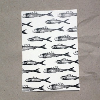 thethe FISHY BUDDIES Postkarte