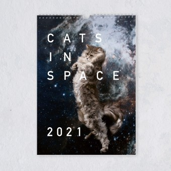 "edition ij ""CATS IN SPACE"" Kalender 2021"