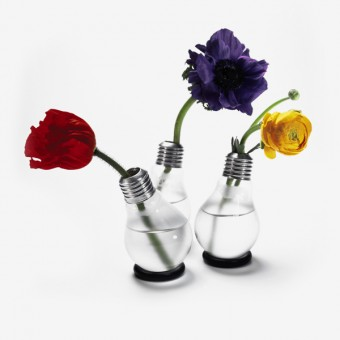 Die Blühbirne Vase (3er-Set)