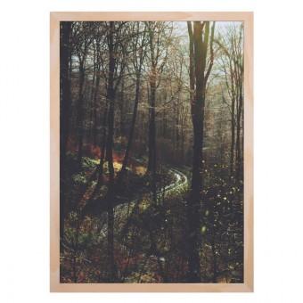 Human Empire Herbstwald Print (A3)