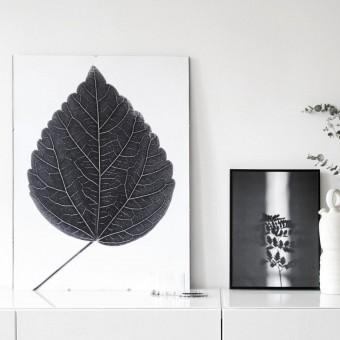"nahili ARTPRINT / POSTER ""look closer HIBISCUS - black""  (DIN A1/A3 & 50x70cm) Blatt Botanic Fotografie"
