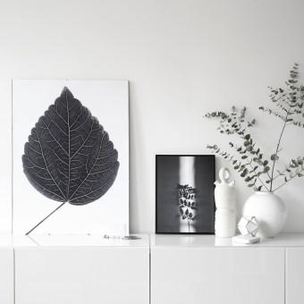 na.hili look closer HIBISCUS - black Artprint A3, 50x70, A1 Poster
