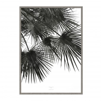 na.hili endless summer WIND Artprint A3 Palmen Poster