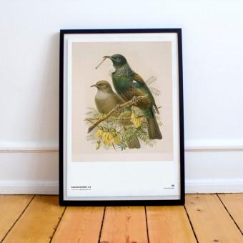 Chiara Tempel – Paradiesvögel #3 – Kippensperling – Poster A3 (297x420mm)