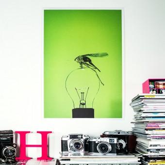 neoncult Posterprint Grashüpfer DIN A2