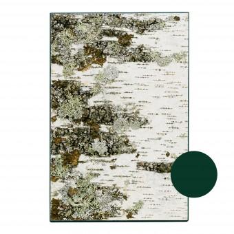 MOYA Birkenrinde Wandpaneele KLEIN - Wandbild aus echter Birken mit Moos und Flechten auf Holz - Wanddekoration - Rinden Wandkunst